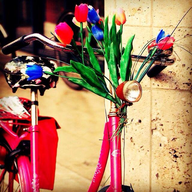 Tulip bike,Amsterdam