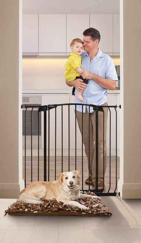 Best 25 Pet Gate Ideas On Pinterest Dog Gates Diy Dog