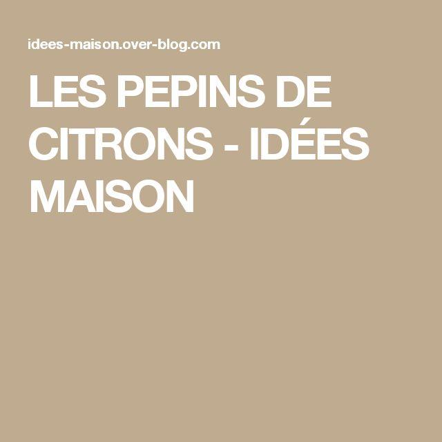 LES PEPINS DE CITRONS - IDÉES MAISON