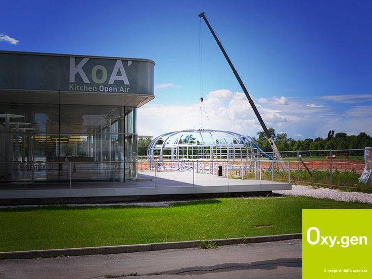 Ecco che, passo dopo passo, si intravede l'anima della bolla d'aria #Oxygen accanto a KoA', Kitchen Open Air, il ristorante aziendale che ogni giorno ospita ricercatori, impiegati e manager del campus scientifico #OpenZone.