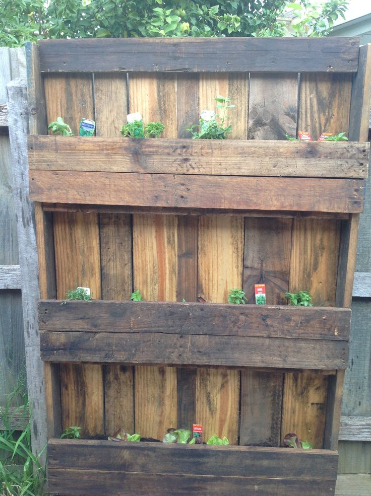 My vertical herb garden.