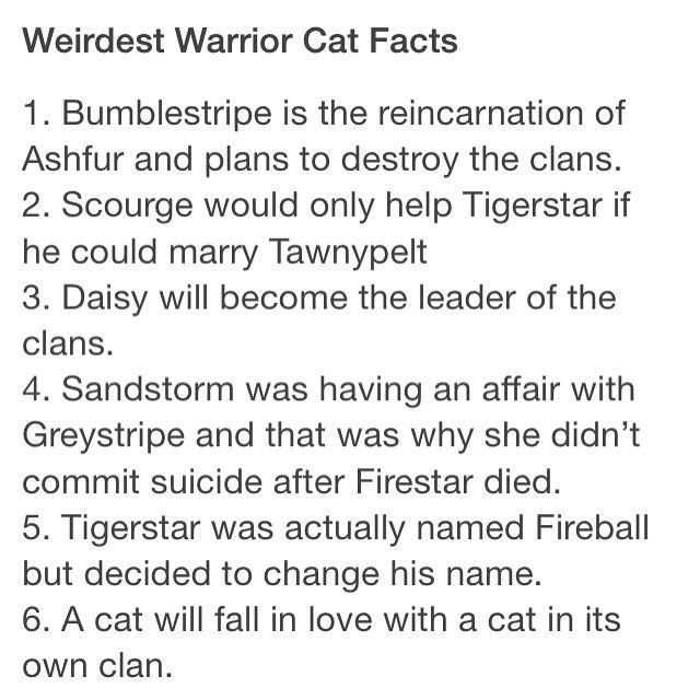 Weirdest Warrior Cat Facts