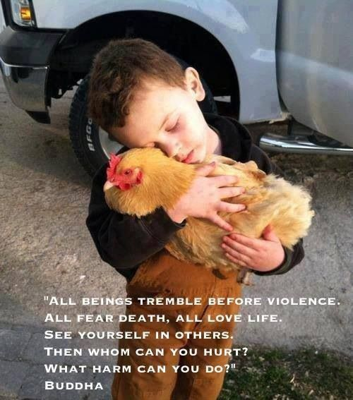 we are born kind.  don't teach your children violence if you want world peace.