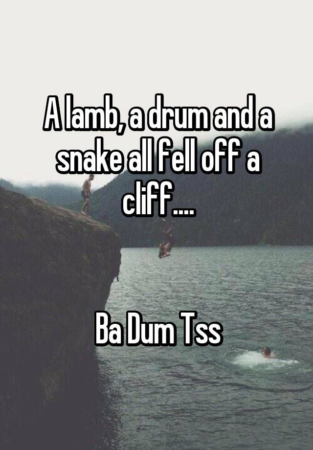 """A lamb, a drum and a snake all fell off a cliff....   Ba Dum Tss""                                                                                                                                                                                 More"