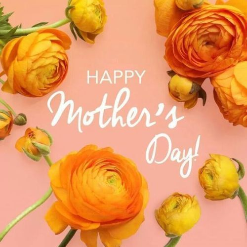 Happy mothers day cards 2017 for mom on mother day. A mothers love is a pure one. I love my mum so much for whatever she has given me.