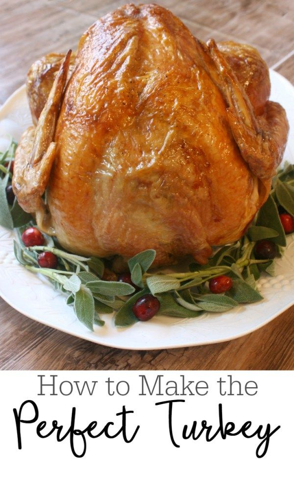 How to Make the Perfect Thanksgiving Turkey