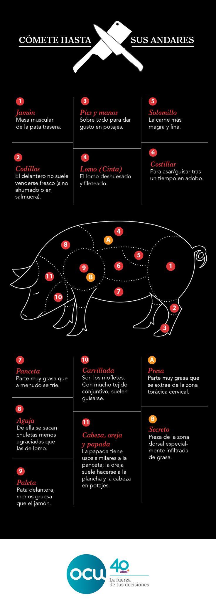 Cada español consume de media 11 kilos de carne de cerdo al año, la mayoría cerdo blanco (el ibérico apenas supone un 1%). Apréndete los nombres de sus diferentes partes para poder comunicarte con el carnicero.