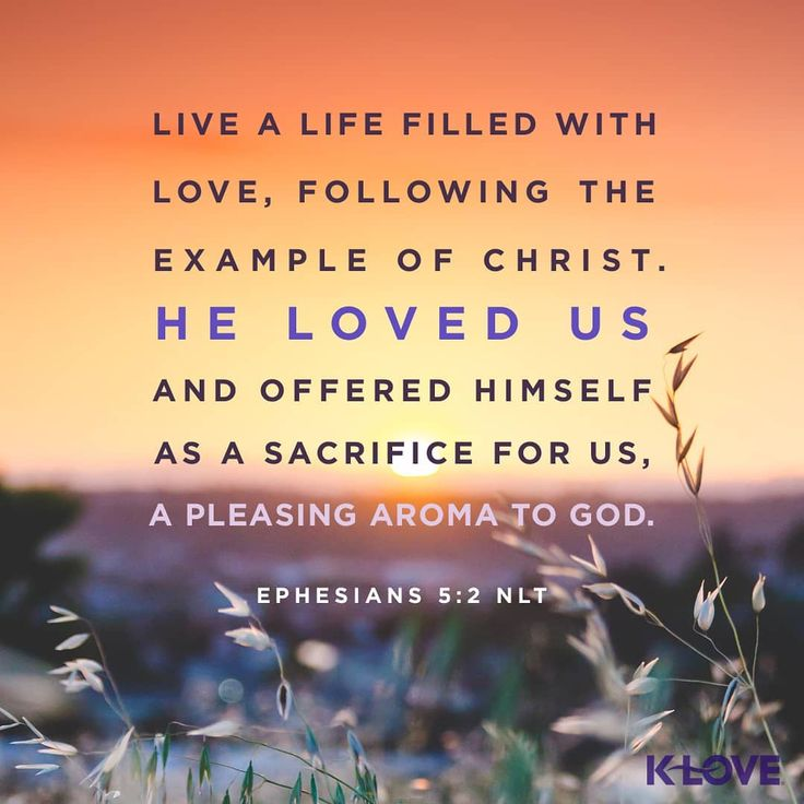 How To Quote A Bible Verse Example: 1281 Best Bible Verses, Quotes And Sayings Images On Pinterest