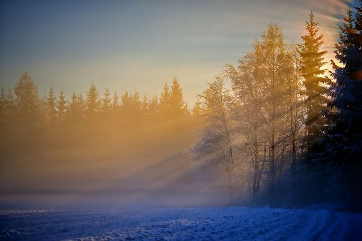 While I passed a deserted winter road, suddenly broke the light through the veil of fog and haze, and landed on the desolate and cold cornfield. We wish so definitely the sunlight welcome.