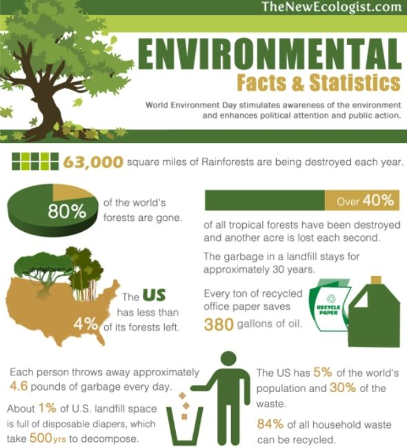 environment affects learning How the environment affects learning rick lyman david c nelson, phd adult learning theory– edu 500 02/04/12 how the environment affects learning this paper will discuss how our environment affects learning.
