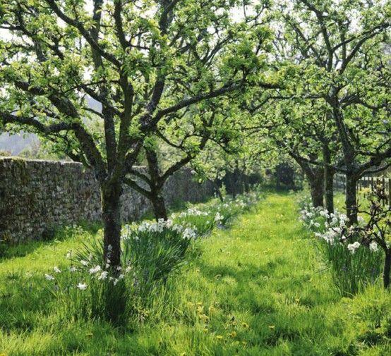 rural Herefordshire, near Hay-on-Wye