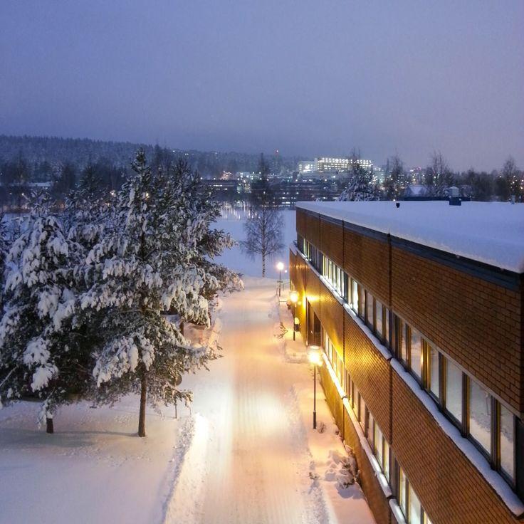 UEF - Kuopio campus, winter