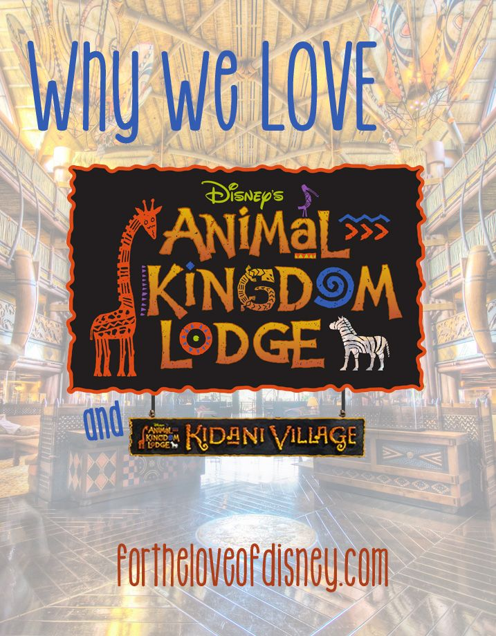 {Why we Love} Disney's Animal Kingdom Lodge