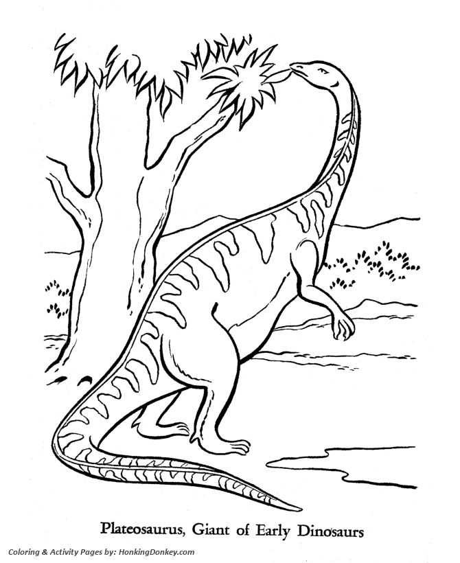 18 best coloring dinosaurs images on pinterest - Dinosaur Coloring Pages Preschool