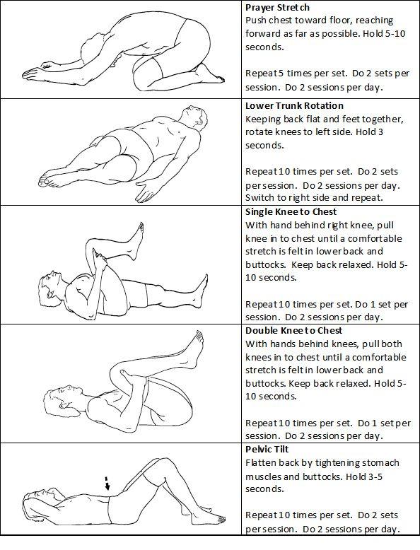 23 Best Best Exercise For Lower Back Pain Images On Pinterest
