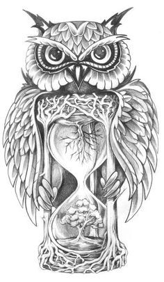 Owl Tree Hourglass Sketch