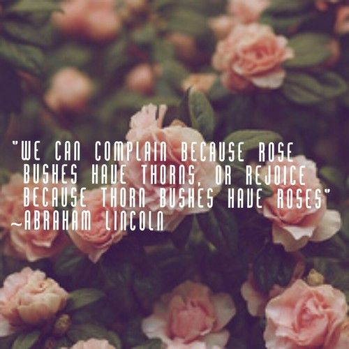 """We Can Complain Because Rose Bushes Have Thorns, Or"