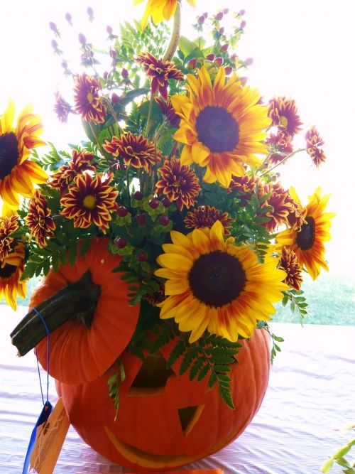 17 best images about fall flowers on pinterest decor pumpkins and vase. Black Bedroom Furniture Sets. Home Design Ideas