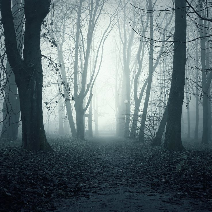 Ghost Path by =i-am-JENius