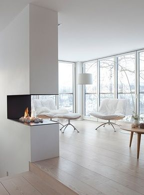 see through gas fireplace in the entry and off the office