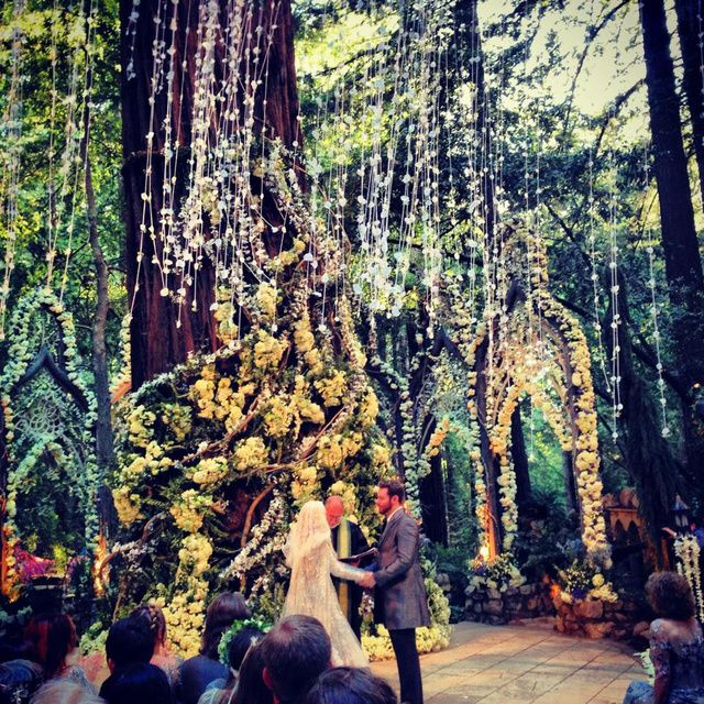 Wedding Venues In The Woods: 25+ Best Ideas About Redwood Forest Wedding On Pinterest