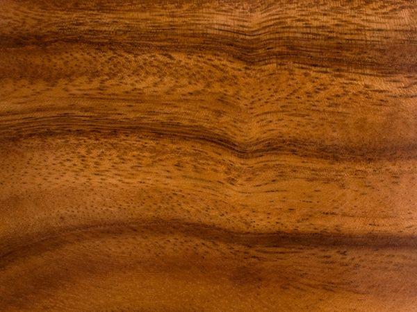 Characteristics of Acacia Wood | URBANARA UK