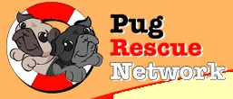 Embrace the neglected, forgotten, and displaced Pugs with compassion, providing hope through education and awareness, helping them by finding their way to a permanent loving home.  http://www.pugrescuenetwork.com/other/index.htm