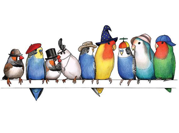 A Row of Birds in Hats  A4 Print by birdsinhats on Etsy