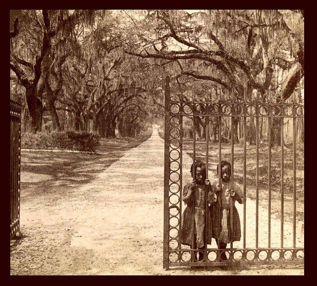 """SLAVES, EX-SLAVES, and CHILDREN OF SLAVES IN THE AMERICAN SOUTH, 1860 -1905 (22) """"I doubt the photographer intended it, but his image of two children still 'behind bars' at the opened gate is filled with allegory about the true situation of the freed slaves."""" Photographed at the old Goose Creek Plantation in Charleston, South Carolina."""