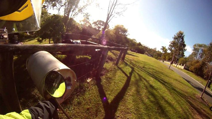 Watch How A Friendly Australian Postman Deals With Dogs On His Route