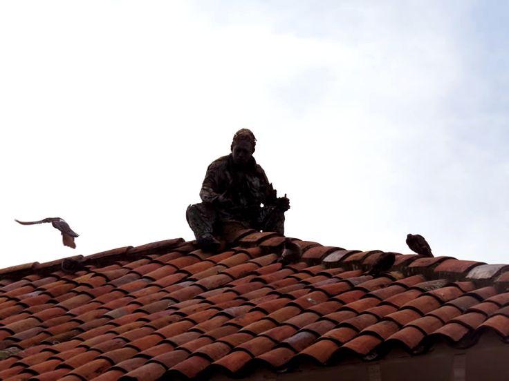 4.Escultura de un señor sentado en el techo de teja de una casa: http://www.tuhotelbogota.co/category/plaza-de-bolivar/