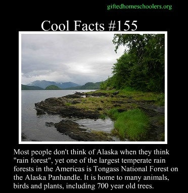 Cool facts #155  http://en.wikipedia.org/wiki/Tongass_National_Forest
