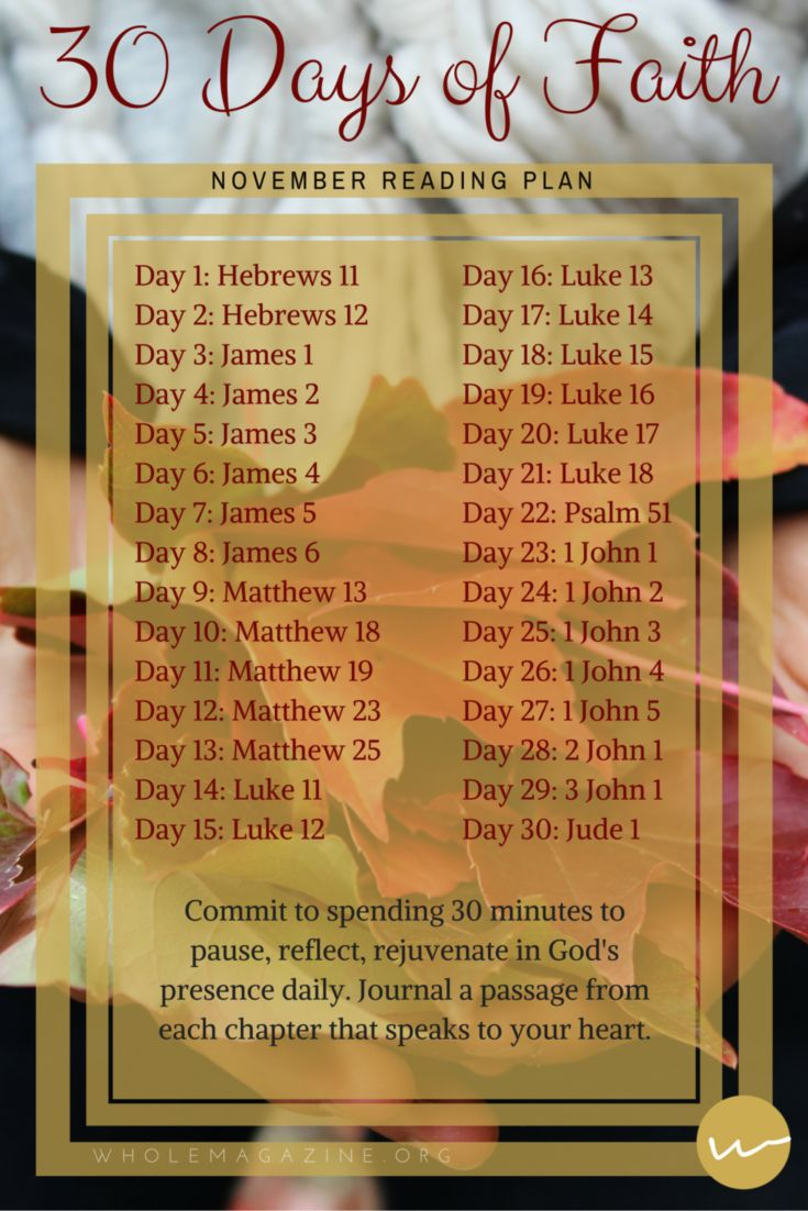 November Bible Reading Plan // 30 Days of Faith // Whole Magazine
