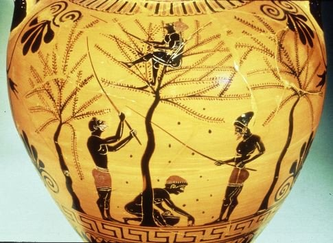 Farming was a way of life for the majority of the citizens in ancient Greece as it provided an income for families. Because the landscape was difficult to use for farming, the main crops were grapes in September and olives that were picked by hand of knocked out of trees in October.
