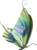 Imágenes de bellas mariposas de colores.