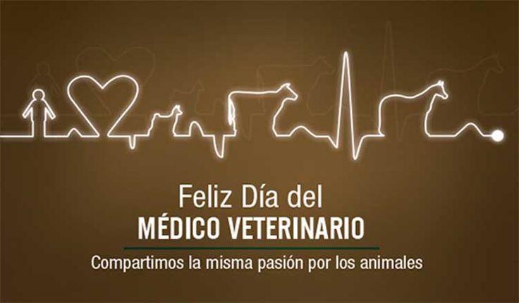 dia del medico veterinario pasión