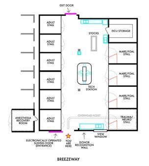 Icu floor plan meze blog for Floor plans health care facilities