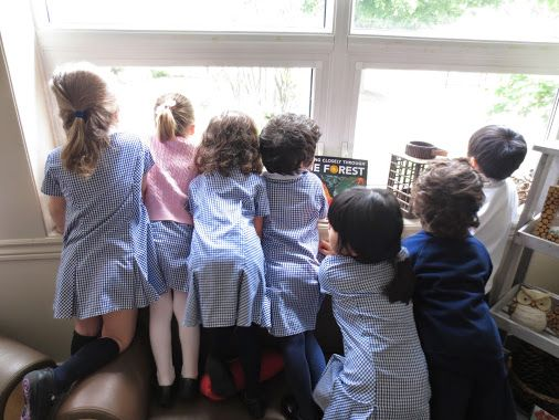 "The PKs observe some bird friends who have finally visited our feeder. They excitedly pronounce, ""There are birds! Look!"""