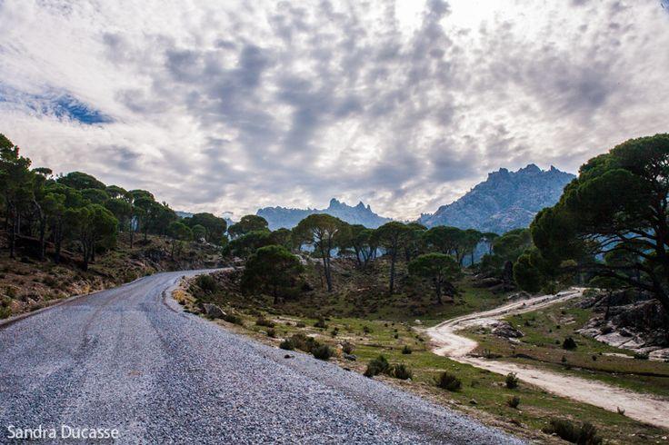 Two roads, Turkey --- Photographer: Sandra Ducasse // Facebook: www.facebook.com/...