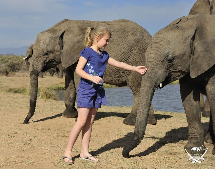 """Kids can be whisked off into a wildlife wonderland at Camp Jabulani this summer. Our Team Tuskers program caters for safari-goers 6 years and older, and is structured to stimulate and entertain younger guests, as well as to allow parents to take a little """"time out"""".#TeamTuskers #PerfectSummer #CampJabulani #Elephants #Safari #SouthAfrica"""