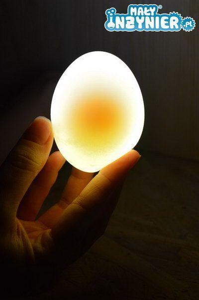 Co zrobić, aby jajko stało się nieco przezroczyste?