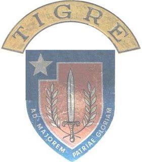 GE 305 ( Grupo Especial nº 305 ) Angola Adstrito a uma Companhia de Militares Catangueses