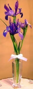 centerpieces with iris