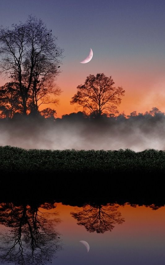 Crescent sunset and forest reflection