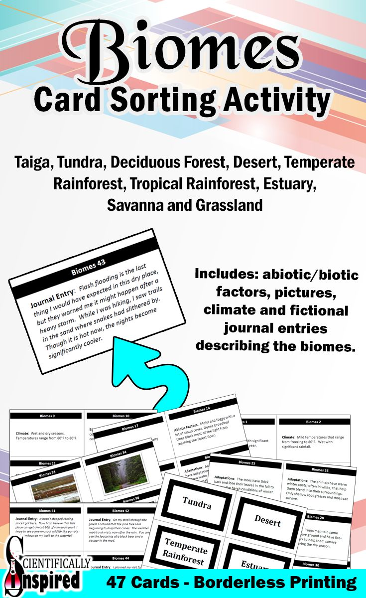 This FREE Biome card sort reviews the abiotic and biotic properties of nine different biomes: Taiga, Tundra, Desert, Temperate Rainforest, Tropical Rainforest, Deciduous Forest, Estuary, Savanna and Grassland. The cards include key terminology related to the biomes, pictures, animal/plant adaptations, location and fictional journal entries.
