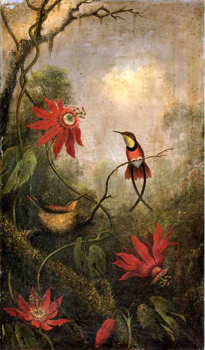 Passion Flowers and Hummingbirds (ca. 1875-1885) by Martin Johnson Heade (b. August 11, 1819; Lumberville, Pennsylvania – d. September 4, 1904; St. Augustine, Florida) Oil on canvas, h: 20 x w: 12 in. (50.8 x 30.48 cm) Museum of Fine Arts, Boston, Massachusetts https://en.wikipedia.org/wiki/Martin_Johnson_Heade
