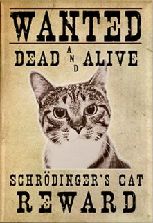 Schrödinger cat's Groundbreaking Thought Experiment »Information       The Schrödinger cat's Groundbreaking Thought Experiment    Erwin Schrödinger was born on August 12, 1887 in Vienna-Erdberg. He was the only child of a wealthy family. Erwin Schrödinger, who received private lessons for his family, completed his successful student life at Vienna Un... http://whatishesaying.com/schrodinger-cats-groundbreaking-thought-experiment-information/