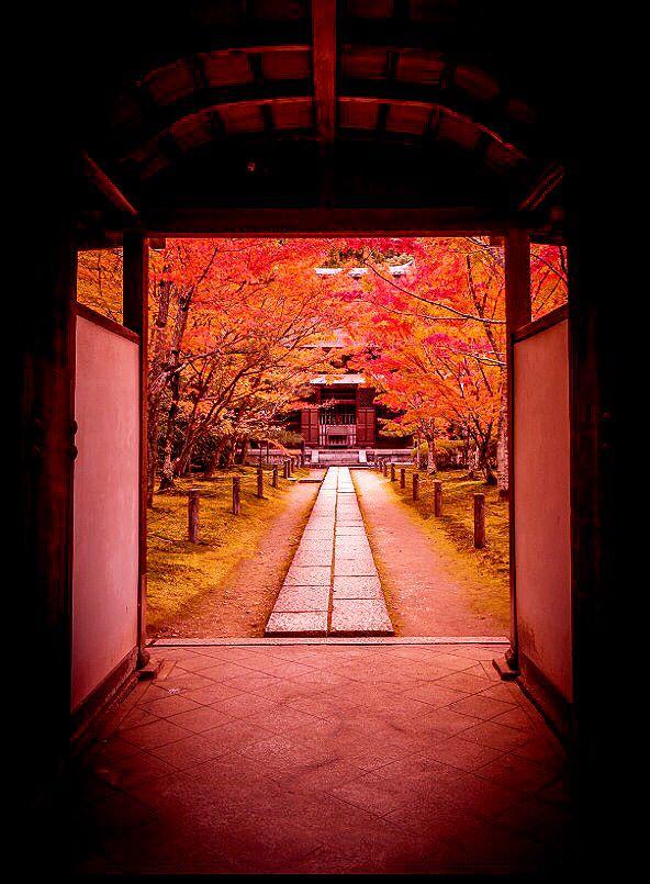 一休寺 Ikkyu-ji Temple,Kyoto