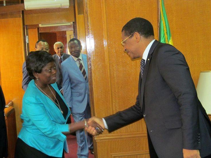 La délégation du bureau du groupe parlementaire du PDG au Senat reçue par le PM