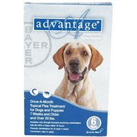 Advantage Dogs for Extra Large Dogs over 55 lbs (Blue) 4 Doses